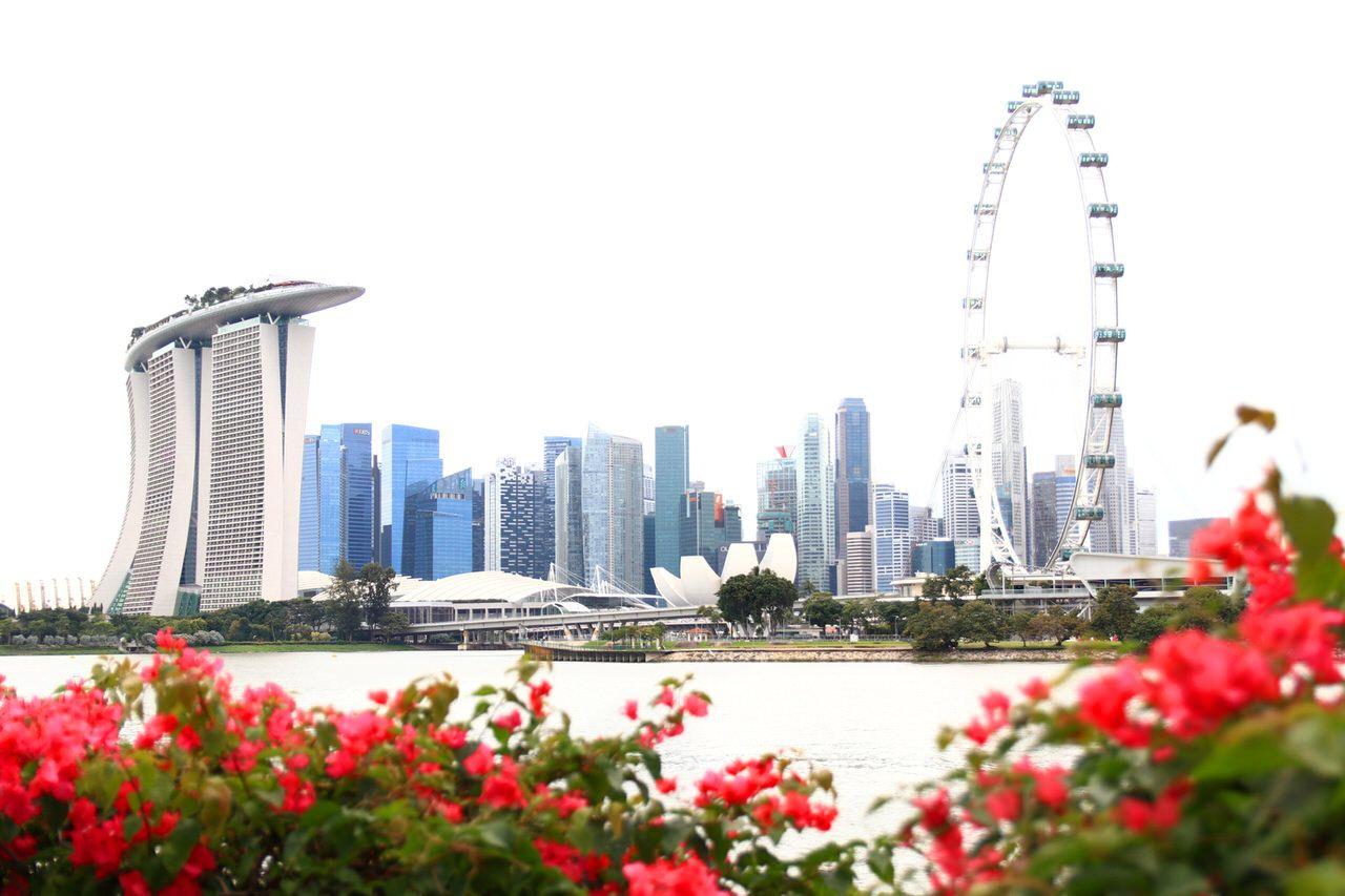 7.シンガポール