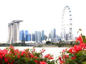 初めてシンガポールを観光するならココ!5日間おすすめモデルコース
