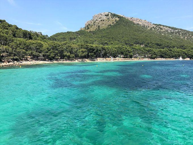 フェリーから地中海の絶景を楽しもう!