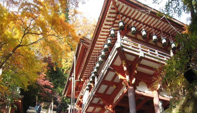 奈良県・紅葉に彩られた「大化の改新」発祥の地