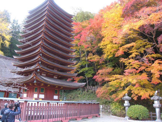 奈良の四季を彩る美しい寺社「室生寺・長谷寺・談山神社」
