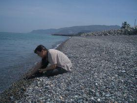 パワーの宿る聖なる石・翡翠(ヒスイ)を自らの手で…糸魚川市「ヒスイ海岸」
