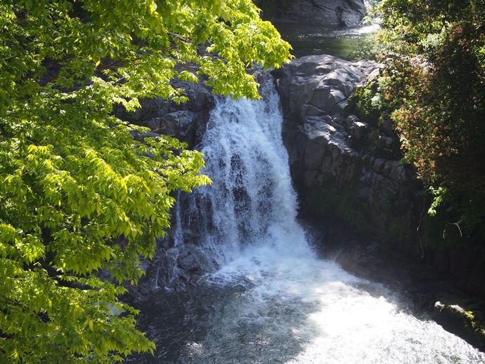 イオンパワーたっぷりの「押川大滝」