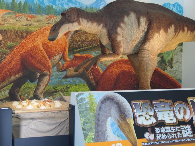 恐竜ロボットとの撮影はいかがですか?