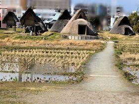 二千年前のロマンに想いを馳せる!静岡「登呂遺跡」
