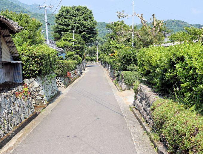 女優「美咲ちゃん」の応援に、TOKIOの山口達也やセレブないずみお嬢様までもが集まった里町の武家屋敷