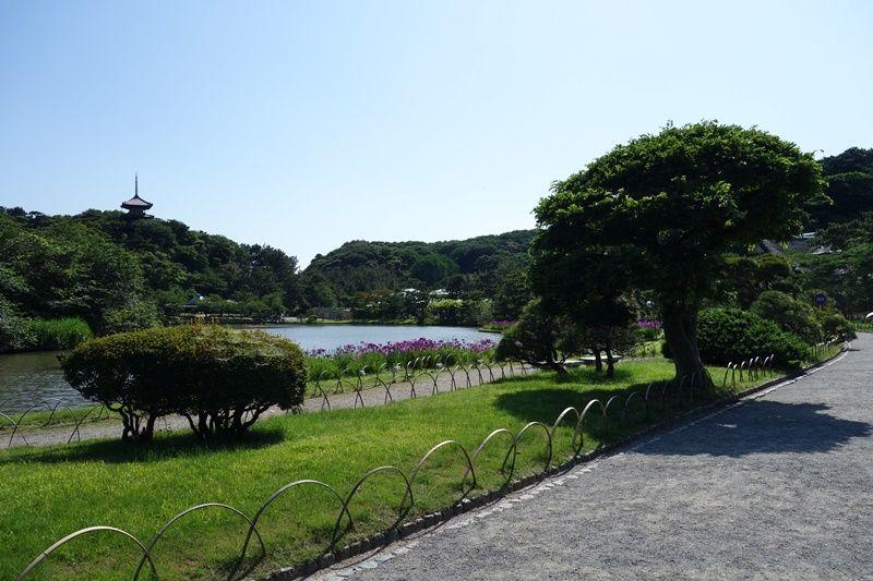 横浜の実業家・原三溪が造り上げた日本庭園