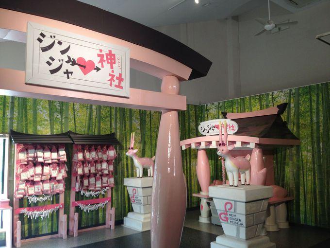 栃木市に誕生した話題の新生姜ミュージーアム