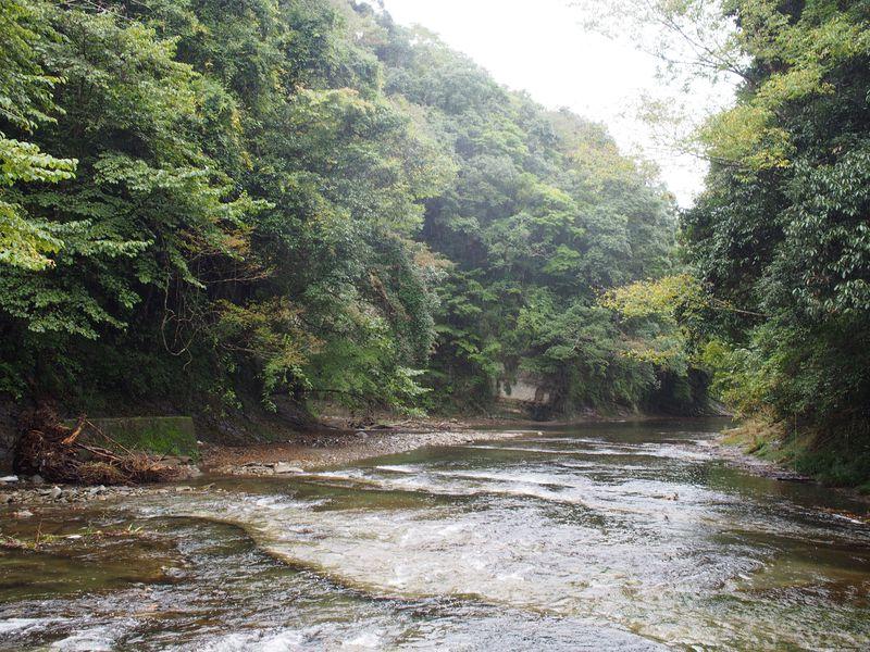 滝あり!蕎麦あり!千葉県・養老渓谷で過ごす癒しの旅へ