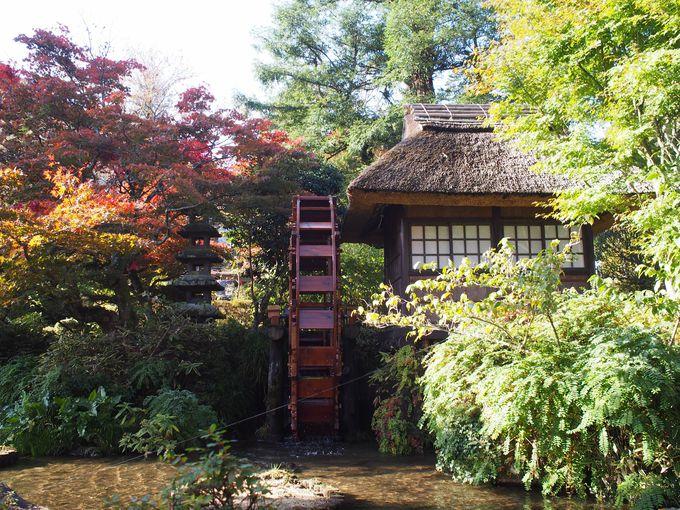 富士屋ホテルの日本庭園
