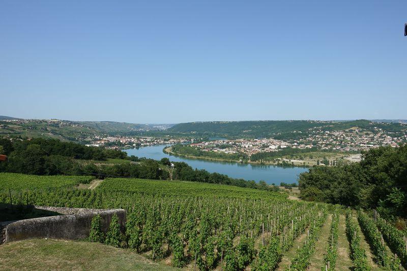 ワインの銘醸地フランス「北ローヌ」おすすめワイナリーとレストランを巡ろう