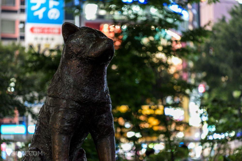 渋谷の待ち合わせ場所といえばハチ公