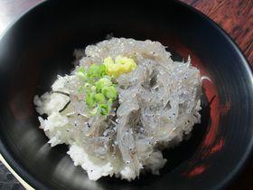 極上「生しらす丼」VS「赤富士丼」静岡・田子の浦港のマストフード!|静岡県|トラベルjp<たびねす>