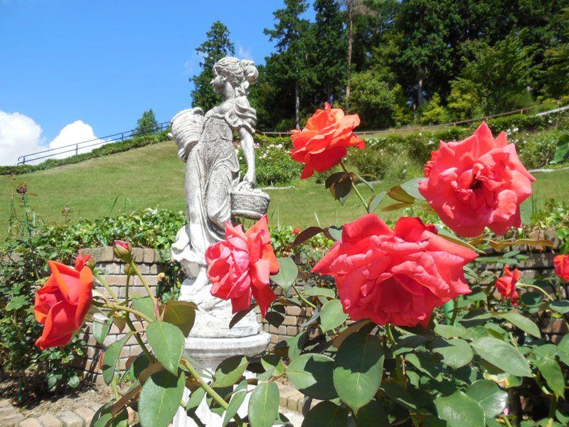 四季それぞれのお楽しみ!花の楽園!