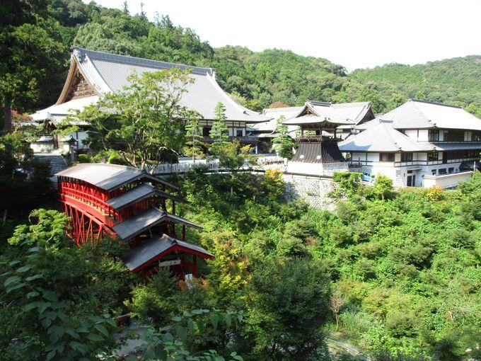 坐禅や写経体験も!浜松の奥山「方広寺」で大河ドラマ・ロケ地見学