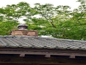 古代ミステリーファン必訪!日本三古碑・宮城「多賀城碑」|宮城県|トラベルjp<たびねす>