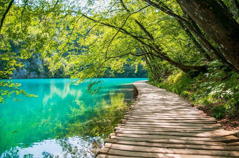 エメラルドグリーンに輝くクロアチア世界遺産「プリトヴィツェ湖群国立公園」