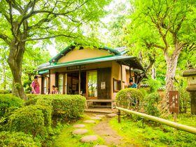 渋谷から20分「等々力渓谷」都内の中心で自然を感じよう!