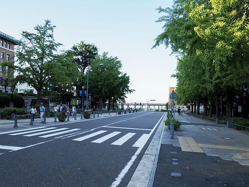 横浜公園と象の鼻パーク