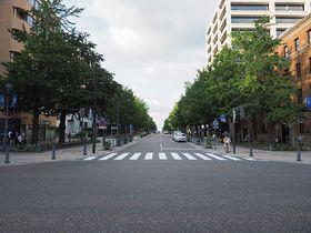 日本初の西洋式街路!海へと続く並木道・横浜「日本大通り」を歩いてみよう|神奈川県|トラベルjp<たびねす>