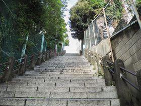 都内屈指の崖地のユニークな坂道!御茶ノ水・駿河台の男坂と女坂
