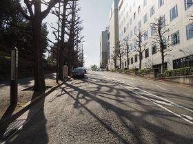 ドラマ「西郷どん」で登場!四ツ谷駅すぐ、歴史的舞台ともなった東京・紀尾井坂めぐり
