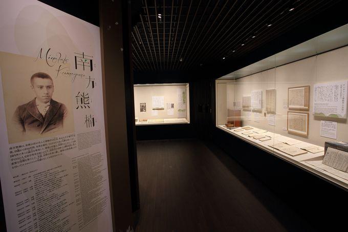 常設展示室では南方氏の生涯を時系列的に紹介