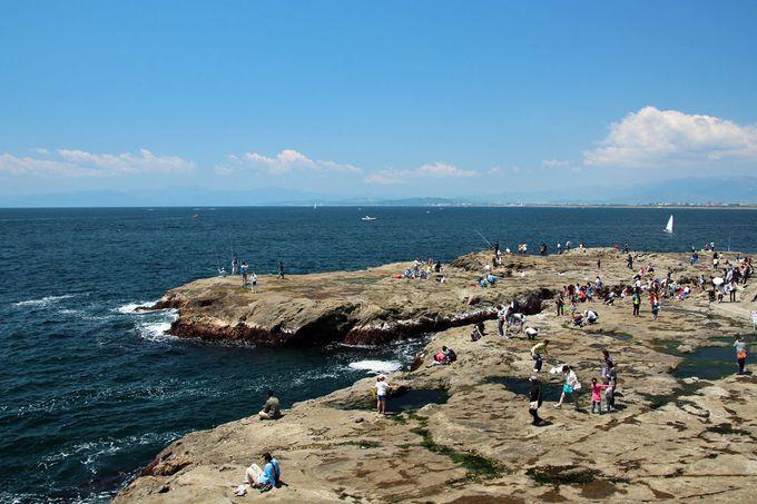 大海原が眼前に広がる「かながわの景勝50選 江の島稚児ヶ淵」
