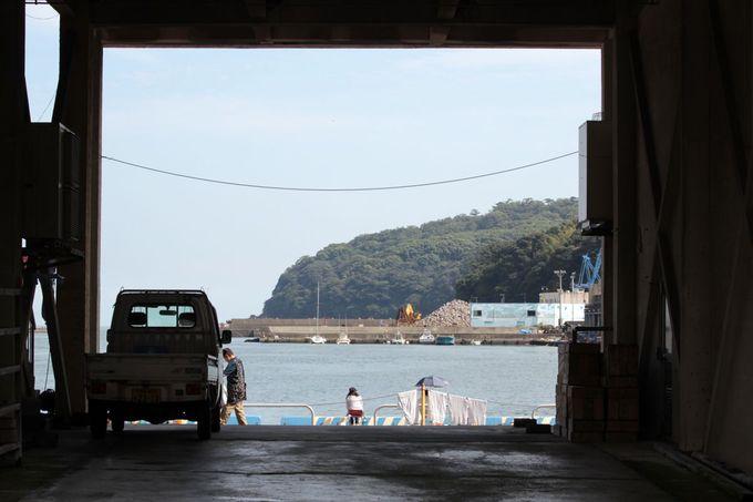 真鶴漁港の風情と海の幸を味わおう!