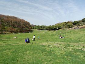 日本初の洋式競馬場跡!広場が爽快な 横浜市「根岸森林公園」|神奈川県|トラベルjp<たびねす>
