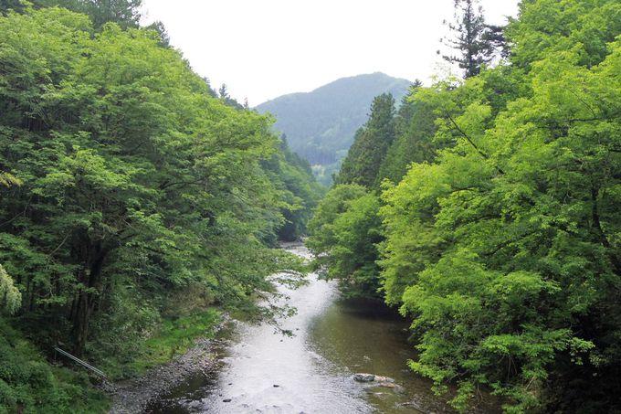 まずは「石舟橋」を渡って橋の上からの景観を楽しもう