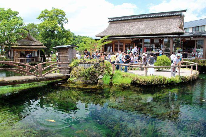 昔は「富士講」の霊場、今は世界遺産構成資産、「忍野八海」