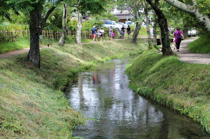 小川に沿って「御釜池」を目指そう!川沿いの小径も良い風情