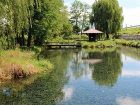 涼やかな水の絶景!「湧水の郷」長野県安曇野の水風景を巡る|長野県|トラベルjp<たびねす>