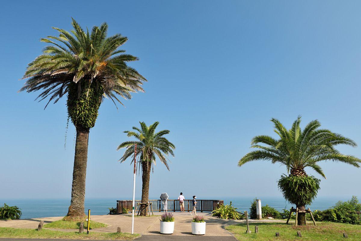 「道の駅フェニックス」前は今の「日南海岸」を象徴する風景
