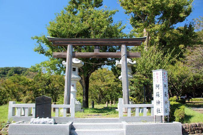 阿蘇神社へも足を延ばそう!その途中でも彼岸花が!