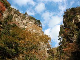 東京にもこんな峡谷がある!東京都指定天然記念物「神戸岩」