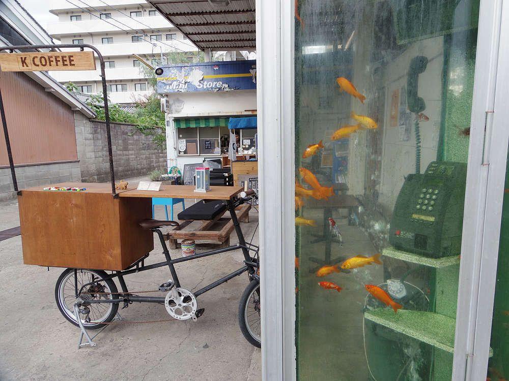 インパクト大!電話ボックスに金魚が泳ぐ「金魚電話ボックス」@K coffeeさん