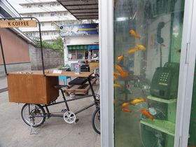 金魚が泳ぐ電話ボックス?自販機?金魚づくしの街・奈良県大和郡山市|奈良県|トラベルjp<たびねす>