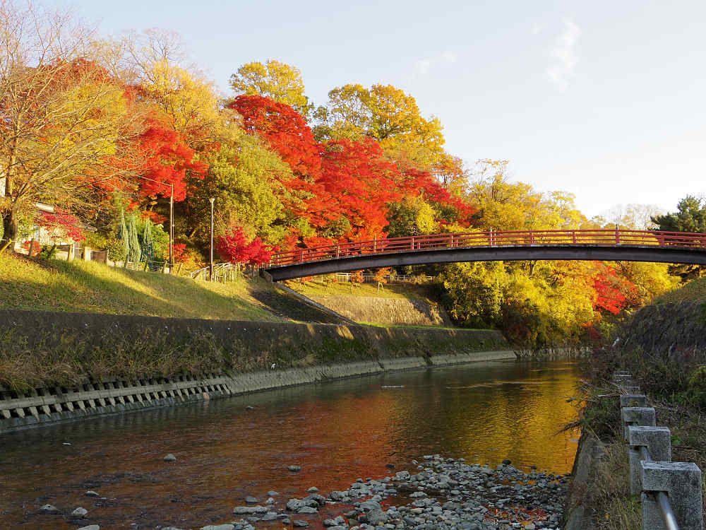 赤い欄干が美しい「紅葉橋」周辺が見どころ