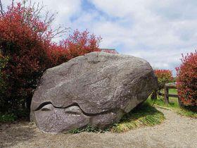 亀型・人型・幾何学型も!飛鳥のユニークな「石造物めぐり」