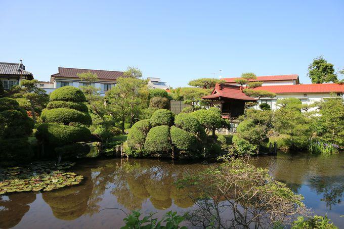 庭が見事!茨城出張にも最適な純和風宿の内原鉱泉「湯泉荘」