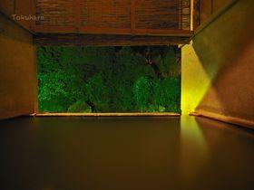世界屈指の炭酸泉・大分県長湯温泉「大丸旅館」で心身を癒やす|大分県|トラベルjp<たびねす>