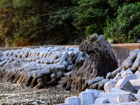 ゴジラもいる秘島!?宇和島・九島に絶景夕日を見に行こう!|愛媛県|トラベルjp<たびねす>