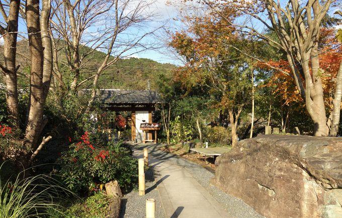 ジビエの先進地、愛媛県鬼北町