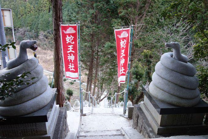 名鹿(なしし)の浜と金運アップに「蛇王神社」