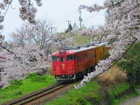 手を振ろう!観光列車「伊予灘ものがたり」でふれあう愛媛のおもてなし|愛媛県|トラベルjp<たびねす>