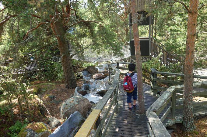 フィンランドの豊かな自然とふれあえるムーミンワールド