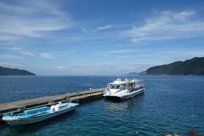 グラスボトムボートでサンゴが生える海中公園を探索