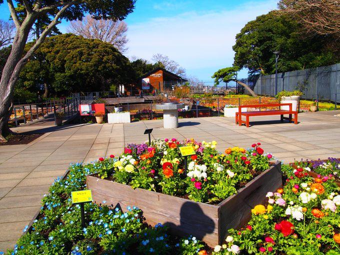 美しい庭園「サムエル・コッキング苑」内にあるロンカフェ(LONCAFE )